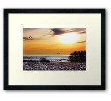 Soaring Above The Downs Framed Print