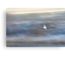 Seagull in a Rush Canvas Print
