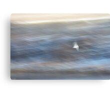 Seagull in a Rush Canvas Print