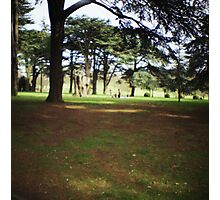 Wollaton Park #2 Photographic Print