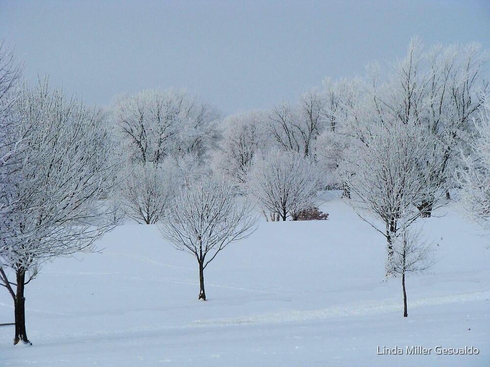 Frost 1 by Linda Miller Gesualdo