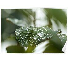 It´s rainning again Poster