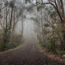 Misty Mountain Hop by Steve Randall