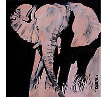 Charged - Elephant Photographic Print
