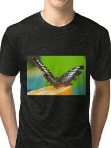 butterffly on fruit Tri-blend T-Shirt