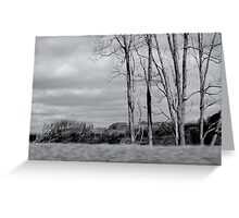 Drive by Shooting Greeting Card