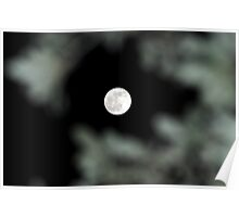 Lunar Eclipse Begins- Lycan Silhouette Poster