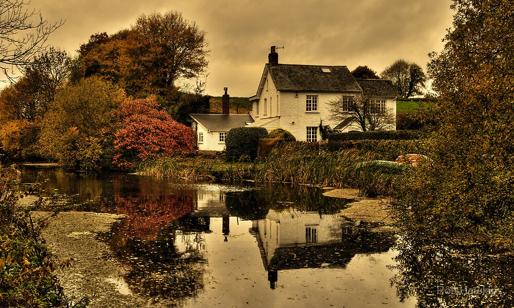 Grand Western Canal at Rock Cottage by Rob Hawkins