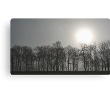 Foggy morning in Stoke Park Canvas Print