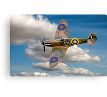 Salute to the Few Canvas Print