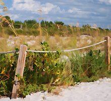 A sandy pathway by Sally Kady