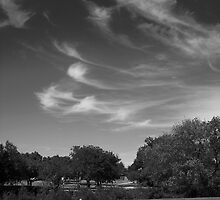 Clouds Over The Park by Jeffery W. Turner