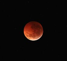 Totality by Luis Argerich