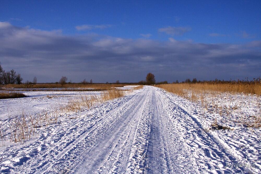 Winter Landscape - Oostvaardersplassen by Jo Nijenhuis