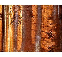Christmas Abstract Photographic Print