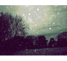 Winter  Photographic Print