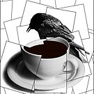 CoffeeCup and Crow 4 by Randall Nyhof