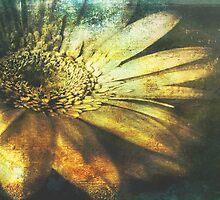 A Floral Symphony by Aj Finan