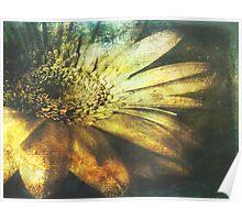 A Floral Symphony Poster