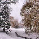 The Willow Weeps Frozen Tears Into The Frozen Stream.... by Sandra Cockayne