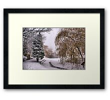 The Willow Weeps Frozen Tears Into The Frozen Stream.... Framed Print
