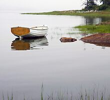 Maine White Boat with Shore by Randall Nyhof