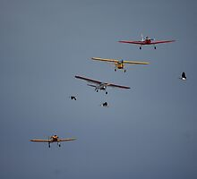Temora Airshow 2008 - Formation Crossover by muz2142
