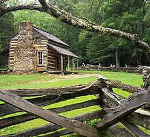 Oliver Cabin Cade's Cove by Randall Nyhof