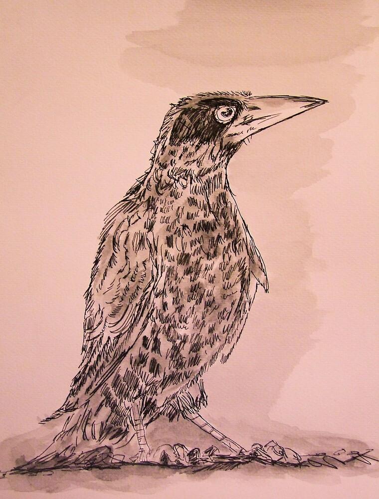 The Crow Field Sketch by leunig