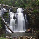 Stephenson Falls in Summer Rain by Cole Stockman