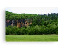 Green Valley, White Sky Canvas Print