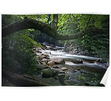 Smokey Mountain Stream 547 Poster
