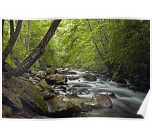 Smokey Mountain Stream 680 Poster