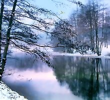 Pastel Pond by Jessica Jenney