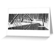 Winter Stream 52 BW Pan Greeting Card