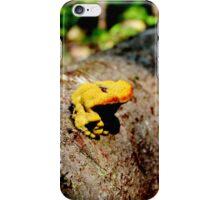 A Plump Protrusion  iPhone Case/Skin