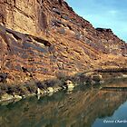 REFLECTIVE UTAH CANYON WALL by Charlene Aycock IPA
