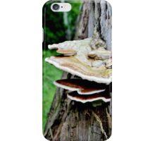 Layers of Fun! iPhone Case/Skin