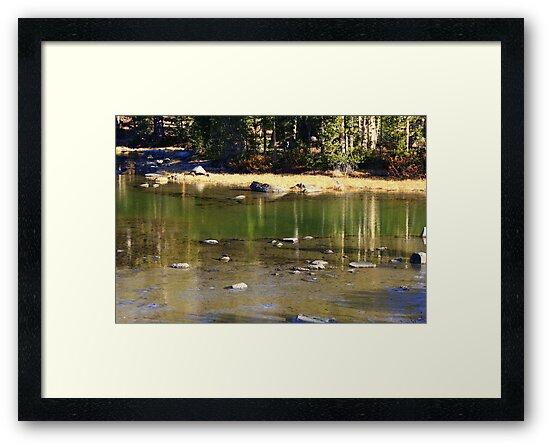 """Meandering River"" by Lynn Bawden"