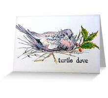 Turtle dove. ('Two turtle doves...'). The Twelve days of Christmas. Greeting Card