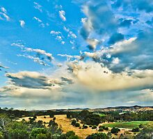 Storm Clouds Coming by leify