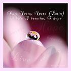 """(Dum Spiro Spero~Latin) """"While I breathe I hope"""" by bfphotoart"""
