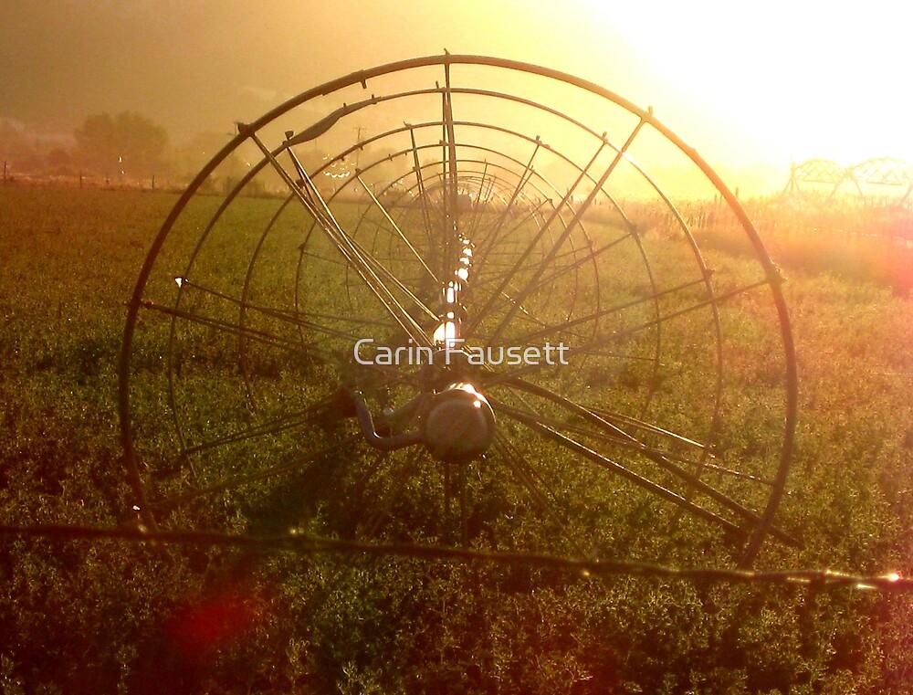 Sprinklers - Sunrise by Carin Fausett