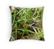 Banded water snake  Georgia Throw Pillow