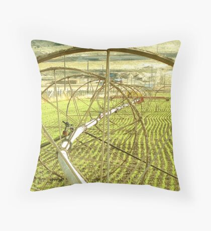 Sprinklers - Complex  Throw Pillow