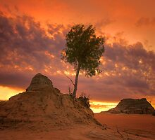 Sunrise - Lake Mungo by Hans Kawitzki