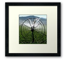 Sprinklers - Bull's Eye  Framed Print