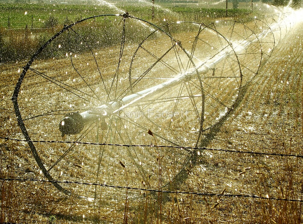 Sprinklers - Promise by Carin Fausett