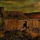 A Run-Down Barn In The Dales by Sandra Cockayne