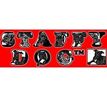 Staffy Dogs Pics in Logo Photographic Print
